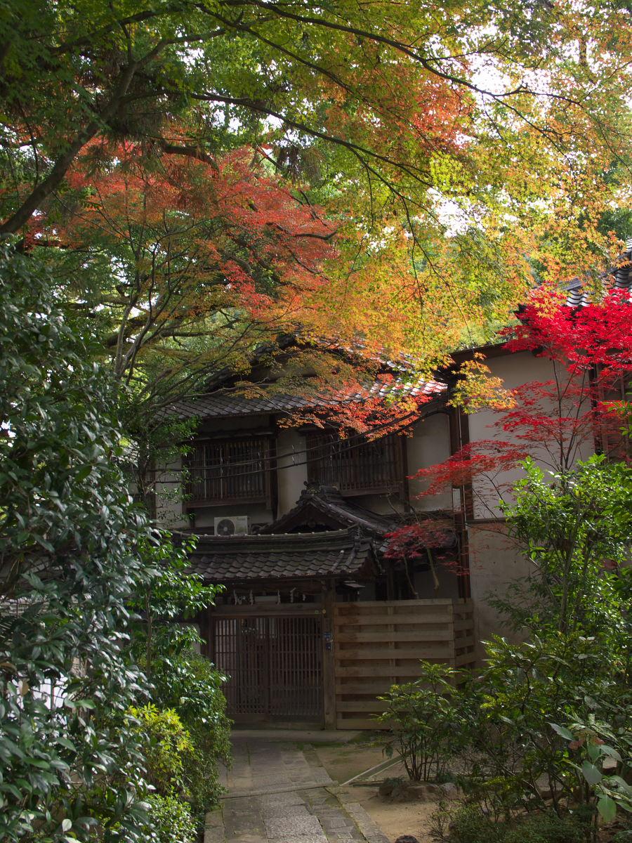 紅葉 2013 <長岡天満宮>        _f0021869_23581467.jpg