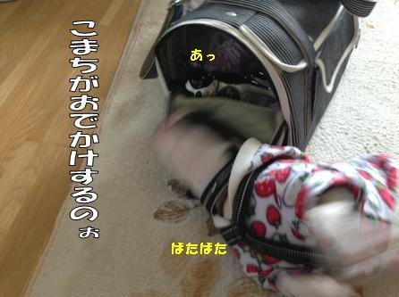 d0256580_9595374.jpg