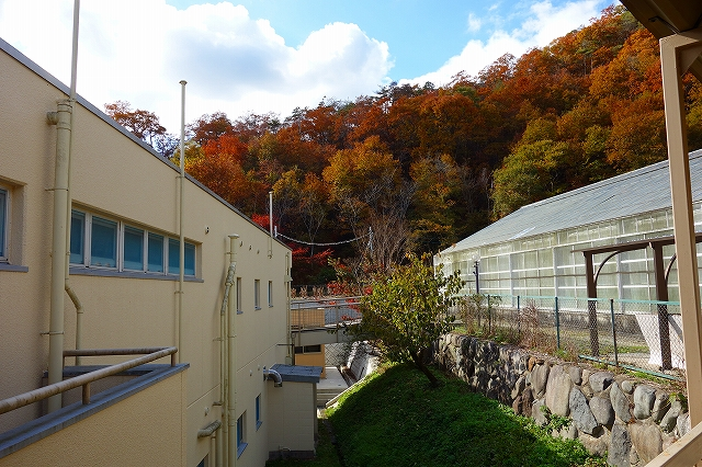 宝塚・希望の家さん発祥の地へ_a0277483_6513684.jpg