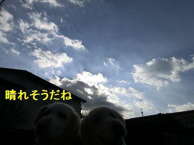 e0222588_1523063.jpg