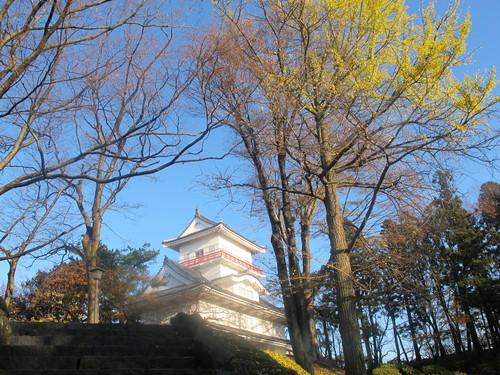晩秋、千秋公園の紅葉・黄葉・落葉のルクス(lux)・・・その11_c0075701_6445340.jpg