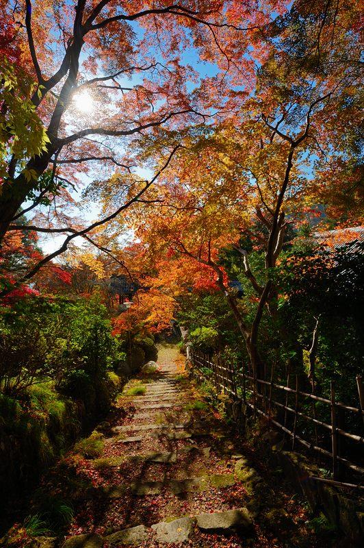 2013京都の紅葉!・金蔵寺 其の二_f0032011_19461715.jpg