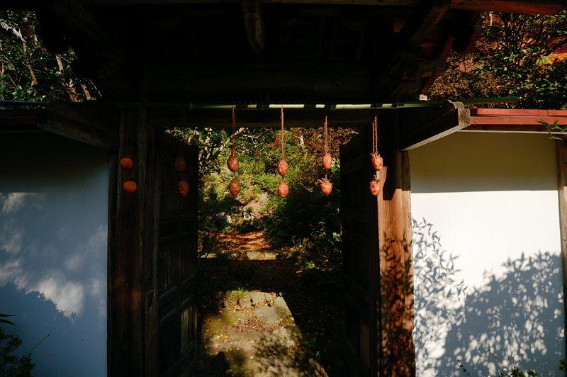 2013京都の紅葉!・金蔵寺 其の二_f0032011_19471246.jpg