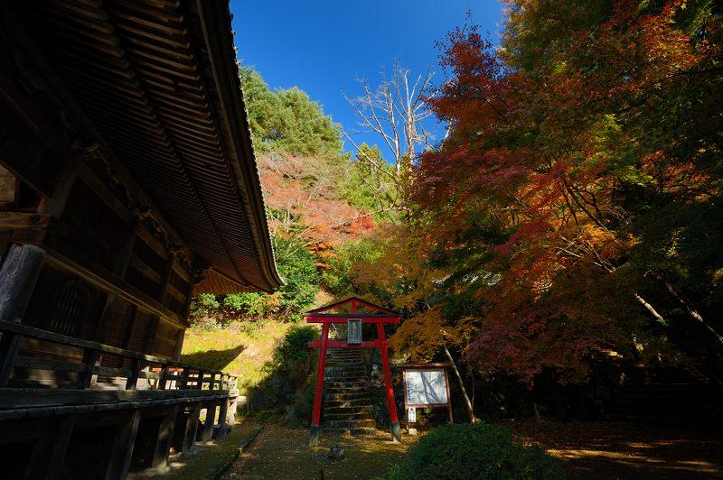 2013京都の紅葉!・金蔵寺 其の二_f0032011_19474971.jpg