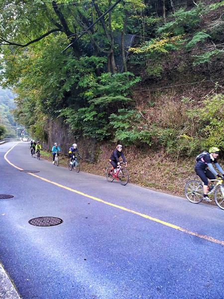 【イベント報告】2013.11.3.sun ほっこり京都観光ロードバイクライド_e0313913_17233655.jpg