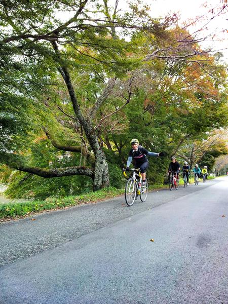 【イベント報告】2013.11.3.sun ほっこり京都観光ロードバイクライド_e0313913_1723371.jpg