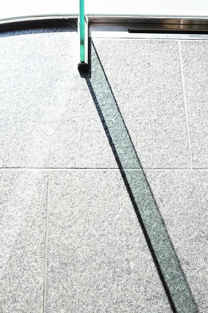 12月15日 小石川植物園ワークショップのお知らせ_f0050534_11591031.jpg