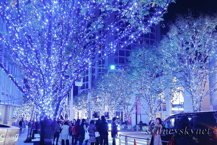 xmas illumination_f0084337_10425377.jpg