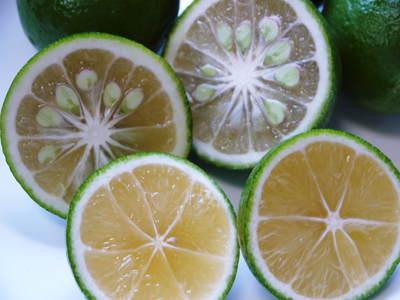種なしかぼす 色付いた「かぼす」はさらに香りは際だち、フレッシュそのもの!!_a0254656_1732562.jpg