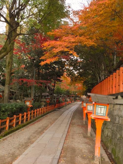 京都紅葉たより 2013_b0153663_17525844.jpg