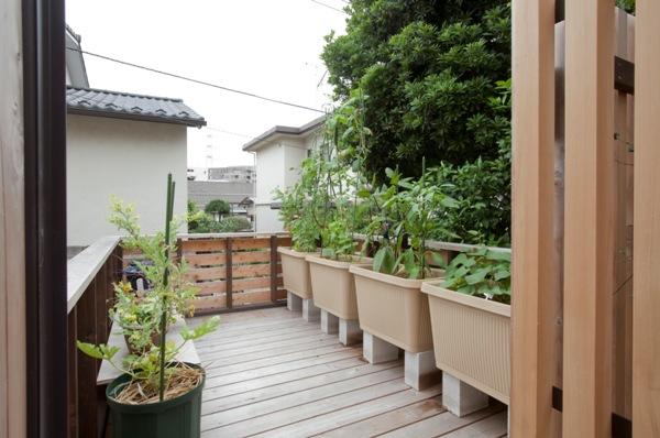 荏田町の家の紹介(3)-2階・中庭_c0310571_17001601.jpg