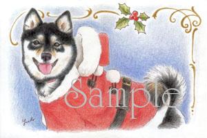 新作♪【柴犬ポストカード】クリスマス_f0062790_9164037.jpg