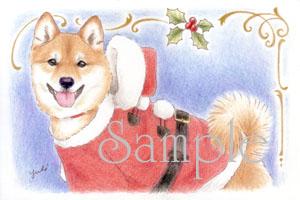 新作♪【柴犬ポストカード】クリスマス_f0062790_9232064.jpg