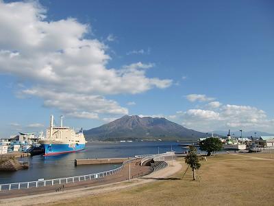 ドルフィンポート・桜島と紅葉と実とハイビスカス : ~毎日 ...