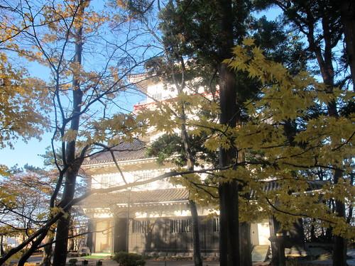 晩秋、千秋公園の紅葉・黄葉・落葉のルクス(lux)・・・その13_c0075701_21555378.jpg