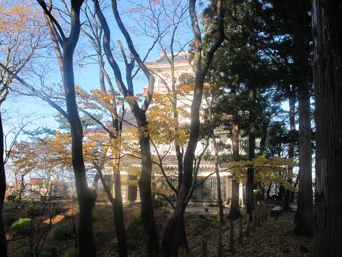 晩秋、千秋公園の紅葉・黄葉・落葉のルクス(lux)・・・その14_c0075701_22733100.jpg