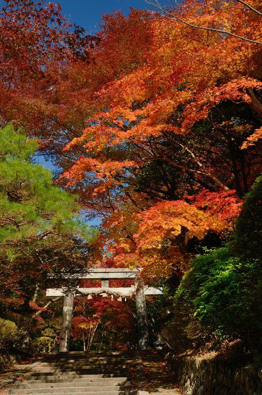 2013京都の紅葉!・大原野神社_f0032011_19415369.jpg