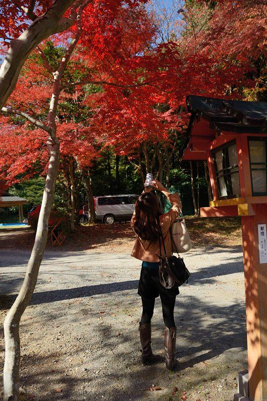 2013京都の紅葉!・大原野神社_f0032011_19433100.jpg
