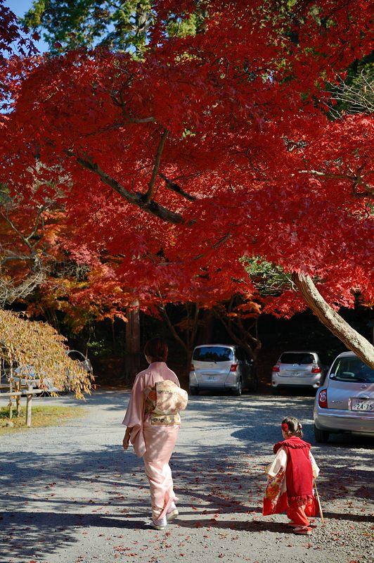 2013京都の紅葉!・大原野神社_f0032011_19434119.jpg