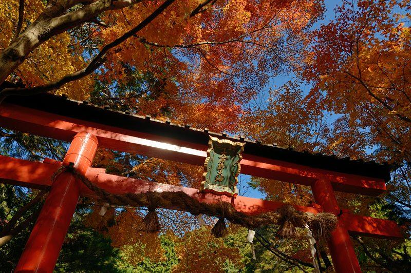 2013京都の紅葉!・大原野神社_f0032011_19445165.jpg
