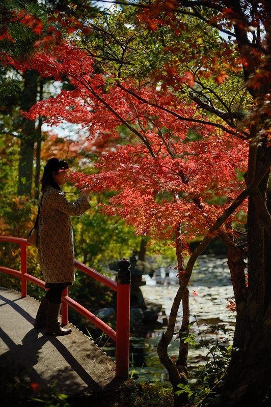 2013京都の紅葉!・大原野神社_f0032011_19464951.jpg
