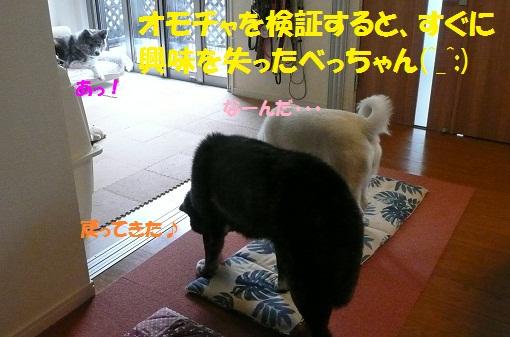 f0121712_1926595.jpg