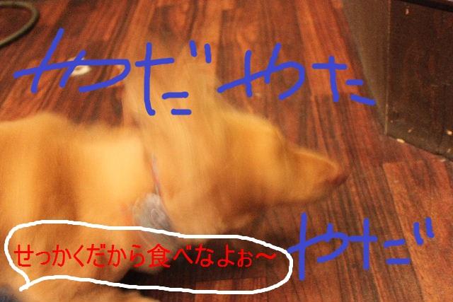 b0130018_7311342.jpg