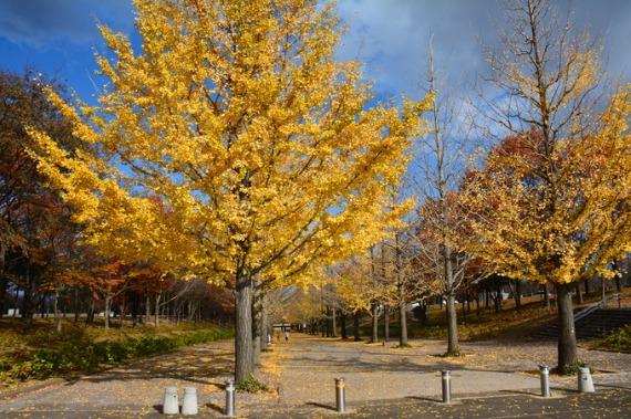 あずま公園_b0249247_1704996.jpg