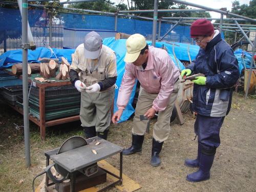 サツマイモ掘り&イベント準備_c0108460_1862578.jpg