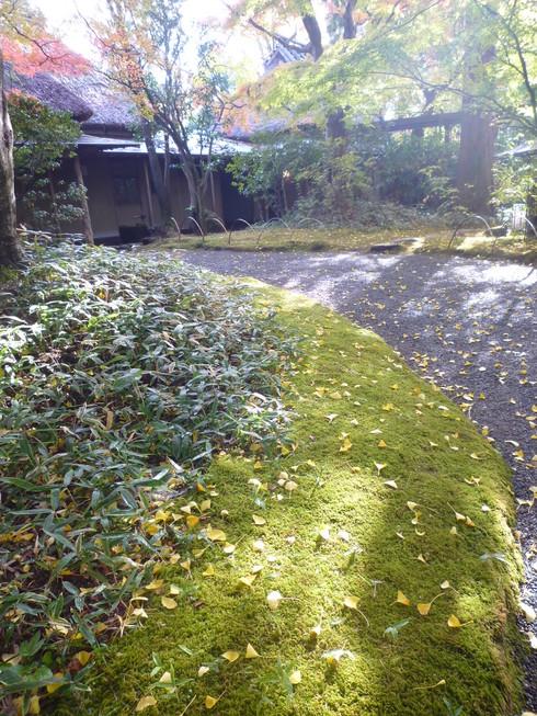 亀の井別荘。。。健太郎さんのお招きで。。。錦秋の湯布院へ。。。。☆⊹⊱..☆*:.。.☆*†_a0053662_14454232.jpg