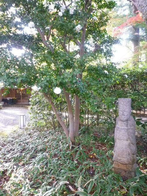 亀の井別荘。。。健太郎さんのお招きで。。。錦秋の湯布院へ。。。。☆⊹⊱..☆*:.。.☆*†_a0053662_14532017.jpg
