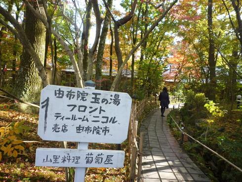 亀の井別荘。。。健太郎さんのお招きで。。。錦秋の湯布院へ。。。。☆⊹⊱..☆*:.。.☆*†_a0053662_1525178.jpg