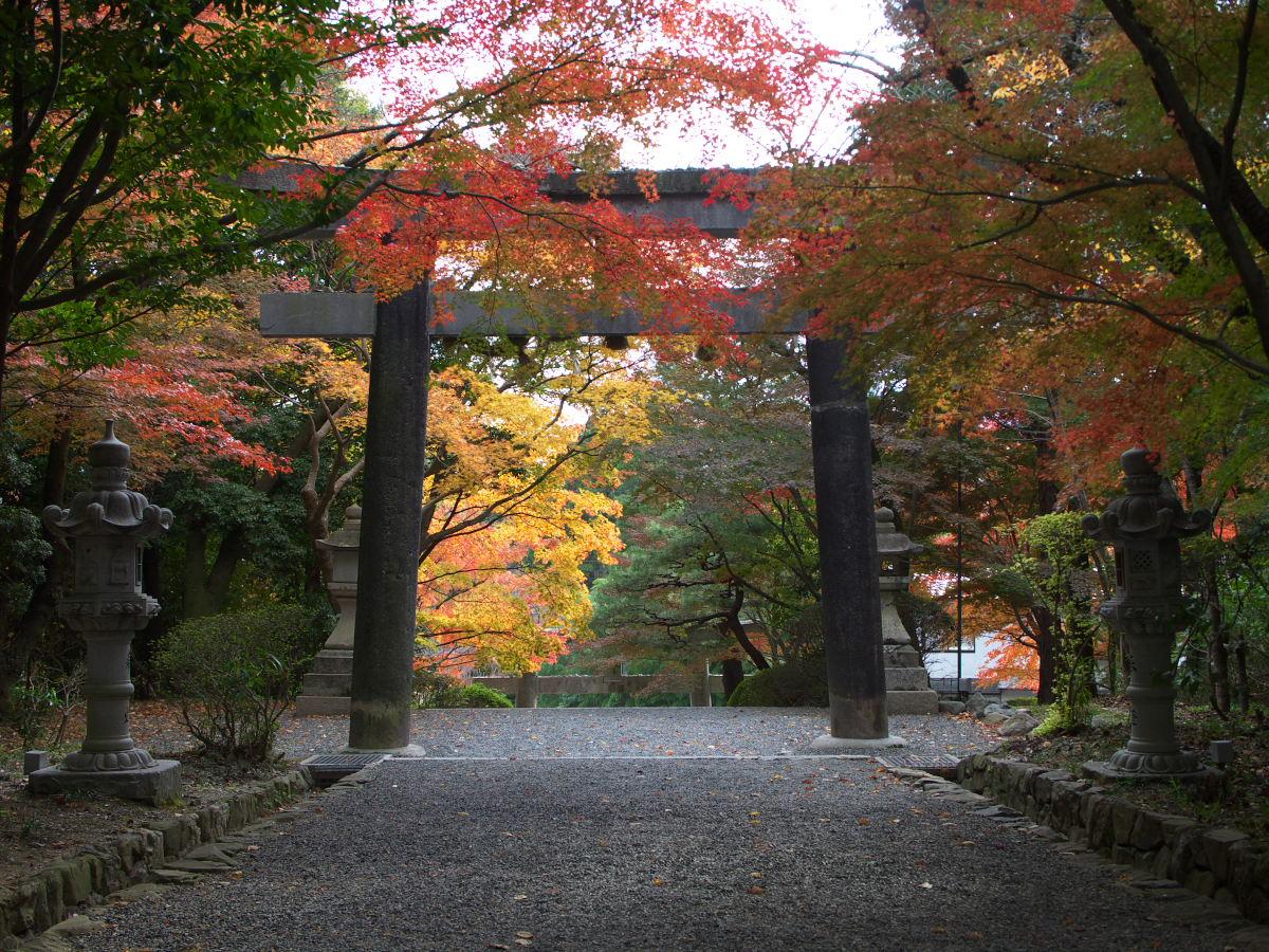 紅葉 2013 <大原野神社>        _f0021869_23482793.jpg