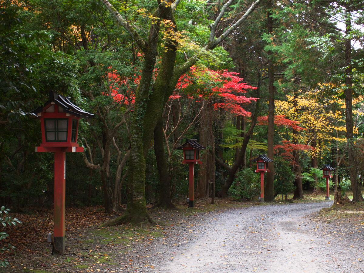 紅葉 2013 <大原野神社>        _f0021869_23483495.jpg