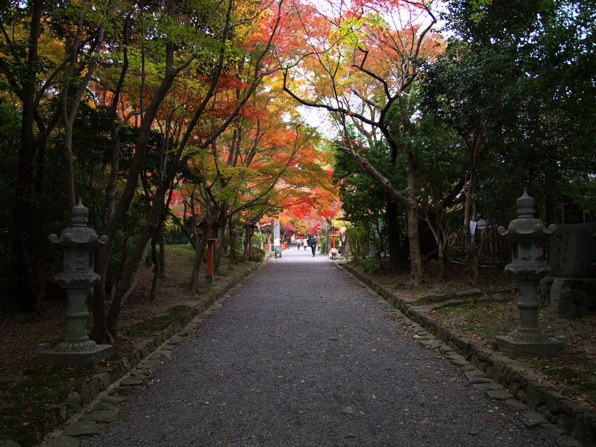 紅葉 2013 <大原野神社>        _f0021869_23483926.jpg