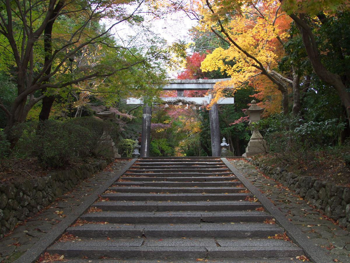 紅葉 2013 <大原野神社>        _f0021869_23493490.jpg