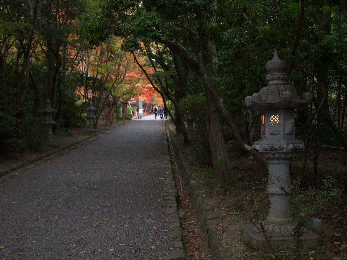 紅葉 2013 <大原野神社>        _f0021869_2349392.jpg