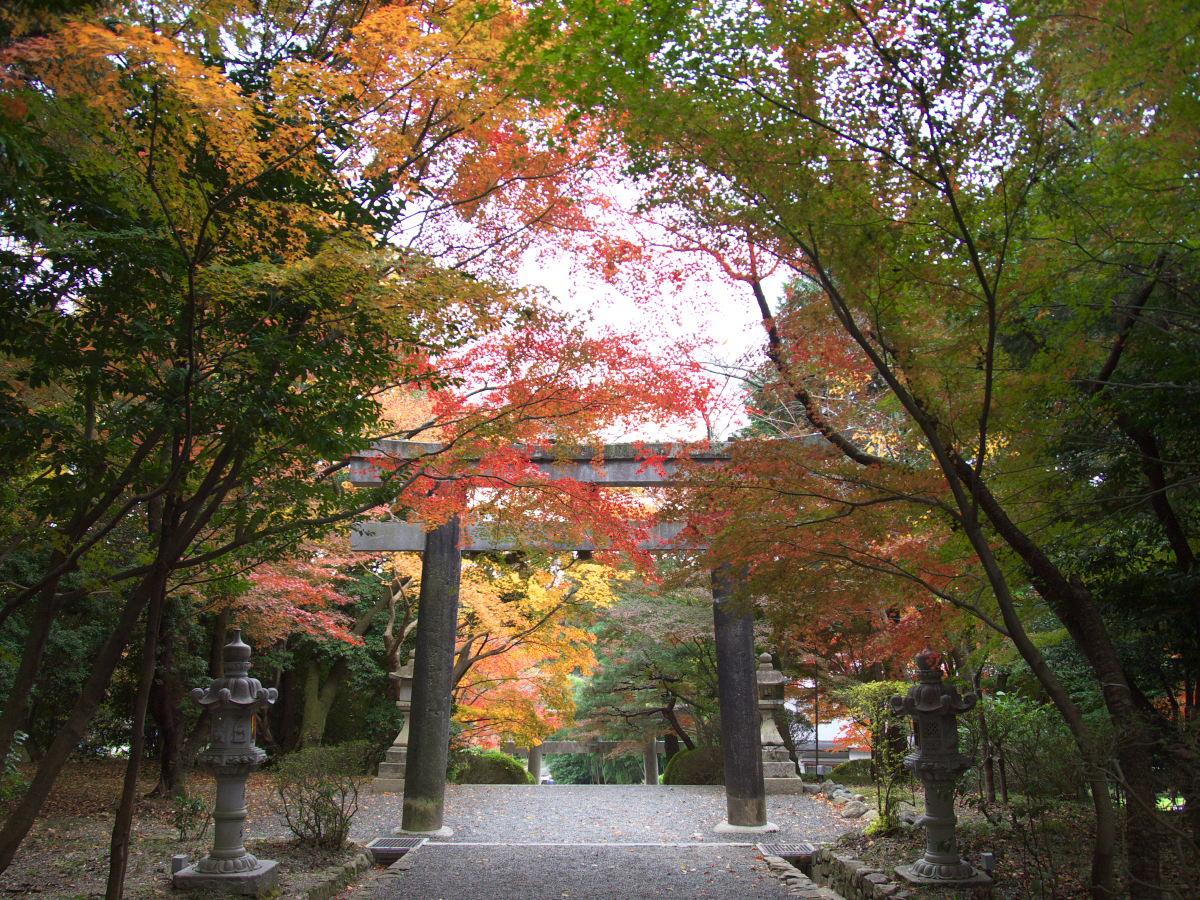 紅葉 2013 <大原野神社>        _f0021869_23493938.jpg