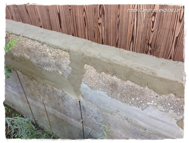 コンクリートブロック塀を何とかしたい・・・ その1_c0176271_22585217.jpg