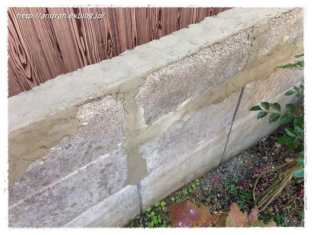 コンクリートブロック塀を何とかしたい・・・ その1_c0176271_2259151.jpg