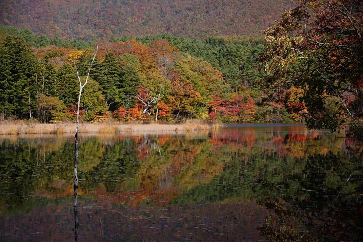 下郷町 観音沼自然公園の紅葉 その4_e0165983_9391926.jpg