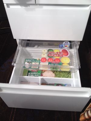 【かしこい節電冷蔵庫】_f0238584_1546588.jpg
