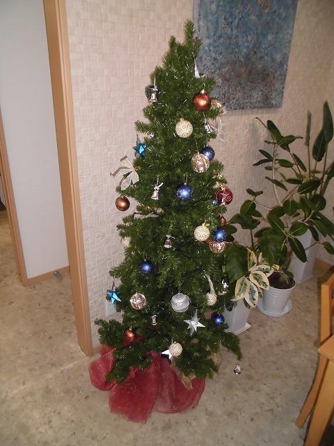もうすぐクリスマス_e0190287_17444459.jpg