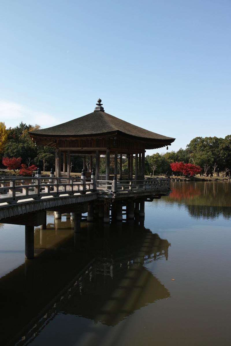 「半年振りの奈良公園」_a0133692_16264790.jpg