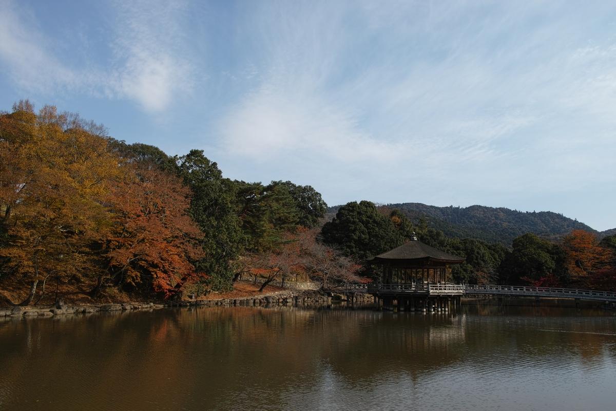 「半年振りの奈良公園」_a0133692_16354568.jpg