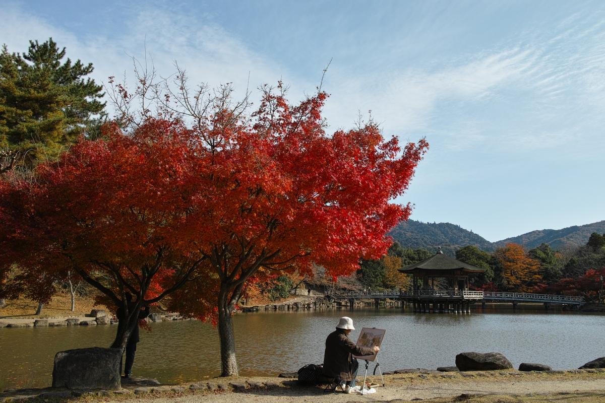 「半年振りの奈良公園」_a0133692_16364438.jpg