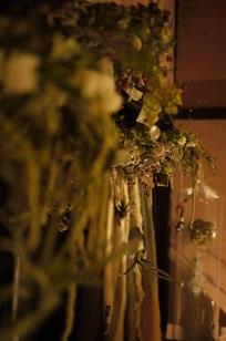 ①最終週にも関わらず、、「フボーと植物展 白Ⅱ」_f0226293_11112949.jpg