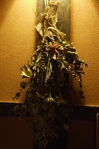 ②ふりかえって、、「フボーと植物展 白Ⅱ」_f0226293_1234742.jpg
