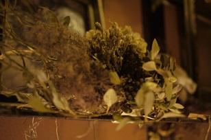 ②ふりかえって、、「フボーと植物展 白Ⅱ」_f0226293_1245483.jpg