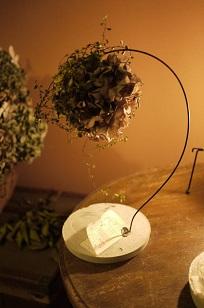 ②ふりかえって、、「フボーと植物展 白Ⅱ」_f0226293_1253086.jpg